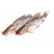 Ayer Fish