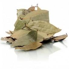 Bay Leaves (Tejpata)