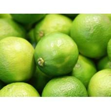Lemon ( লেবু )