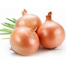 Onion (Desi)